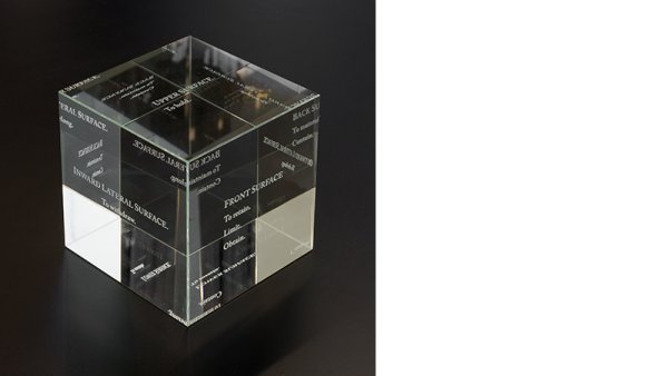 The Invisible Cube, Liz Magic Laser, 2013, etched crystal, 4 x 4 x 4 in., edition of 5, installation view, Paula Cooper Gallery, New York.