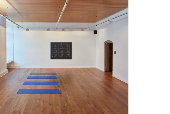 Identification Please, Liz Magic Laser, 2016, newspaper and video installation, installation view with Identification Please (meditation tape), 2016, audio track and yoga mats. Music composed by Mati Gavriel and Diagram: Delsarte System of Oratory, 2013, acrylic and silkscreen enamel on canvas, 54 x 68 in., edition of 3, Kunstverein Göttingen, Germany.