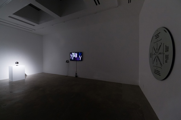 The Thought Leader, Liz Magic Laser, 2015, video installation, 9 minutes, installation view, Various Small Fires, Los Angeles.